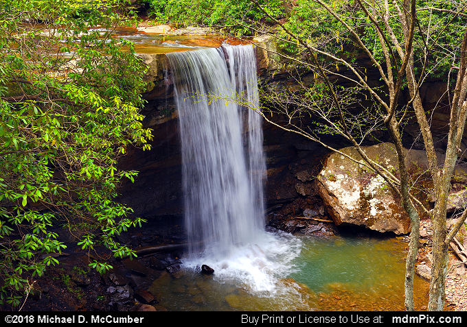 Cucumber Falls (Cucumber Falls Picture 022 - May 8, 2018 from Ohiopyle State Park, Pennsylvania)
