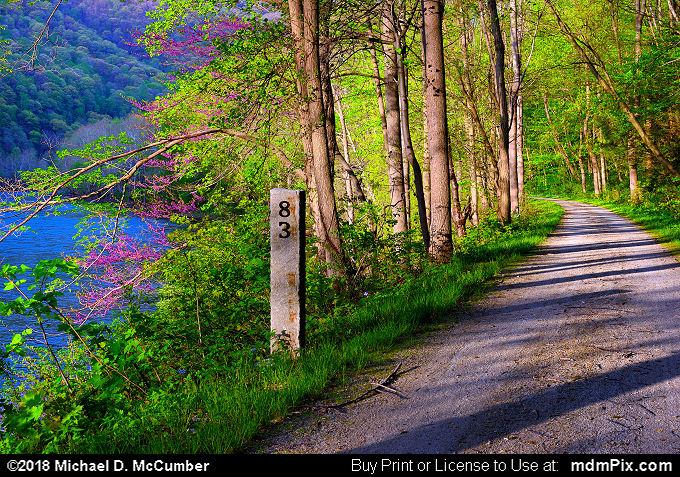 Great Allegheny Passage Trail at Chestnut Ridge