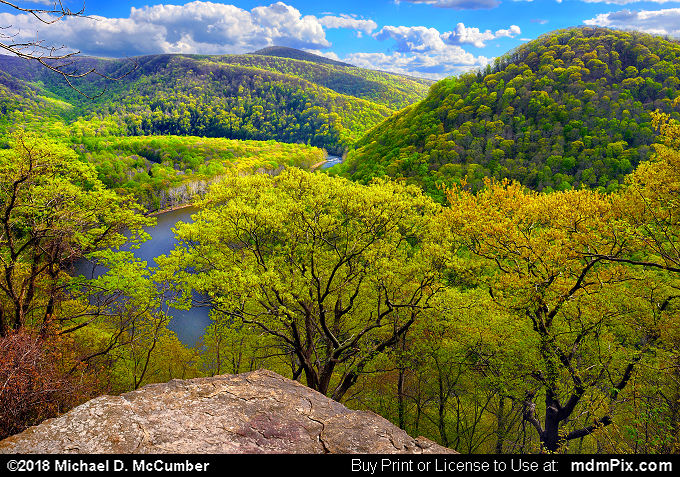 LH Trail's Youghiogheny River Gorge Vista (LH Trail's Youghiogheny River Gorge Vista Picture 001 - May 9, 2018 from Ohiopyle State Park, Pennsylvania)