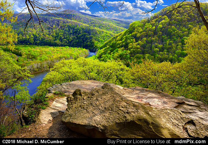 LH Trail's Youghiogheny River Gorge Vista (LH Trail's Youghiogheny River Gorge Vista Picture 002 - May 9, 2018 from Ohiopyle State Park, Pennsylvania)