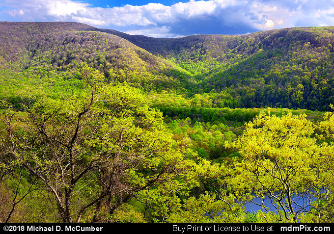 Laurel Ridge (Laurel Ridge Picture 003 - May 9, 2018 from Ohiopyle State Park, Pennsylvania)