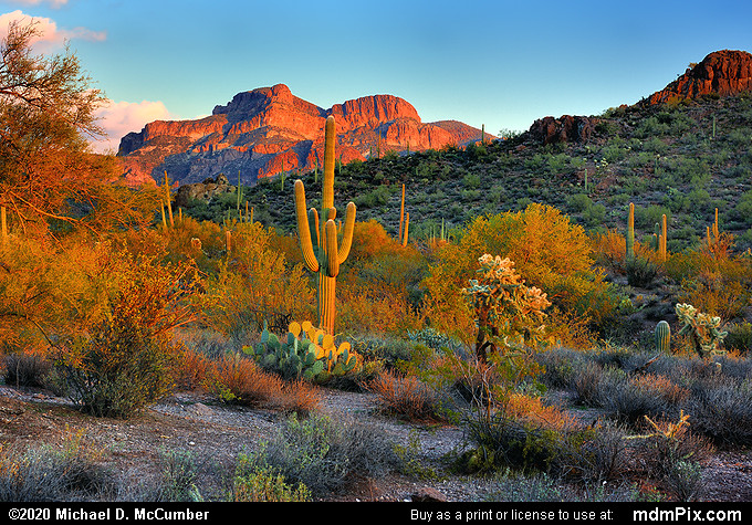 Sonoran Desert Sunset Color at Superstition Wilderness