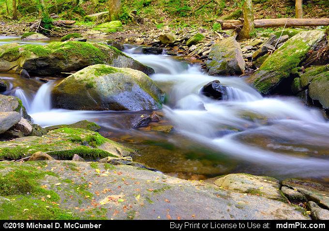Cascading Waters of Virgin Run in Spring